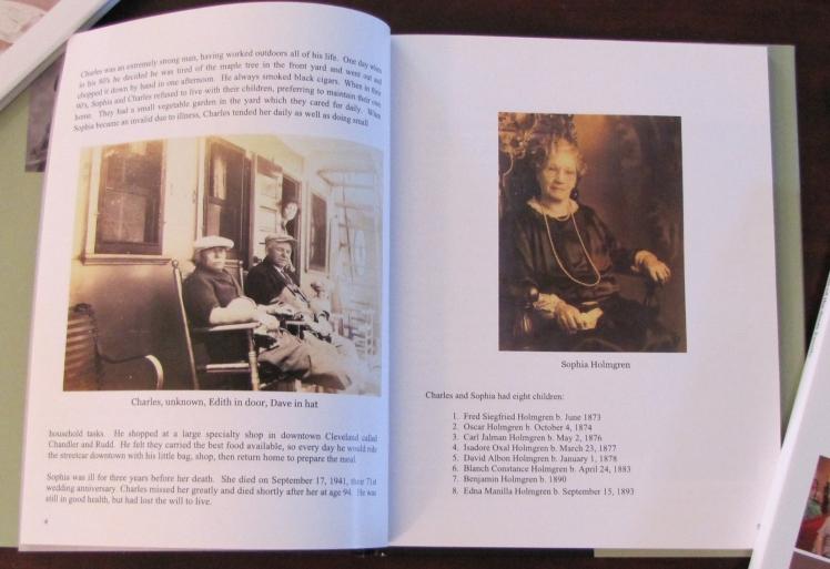 Holmgren book p 1